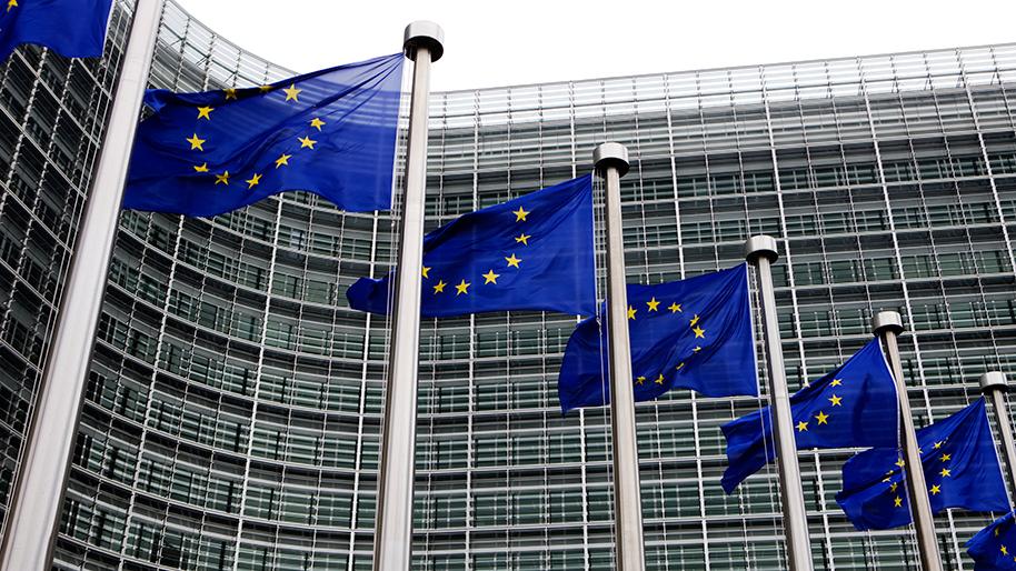 Europe : le bien-être animal en tête des priorités de la présidence allemande