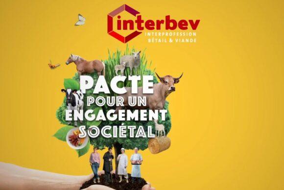 Enjeux Sociétaux : une vidéo pour présenter «Le Pacte pour un engagement sociétal»