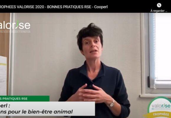 RSE : la prise en compte du Bien-être animal récompensée par les trophées «Valorise» (Cooperl)