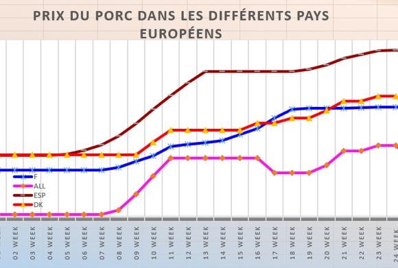 Porc : l'offre abondante pèse sur les cours européens