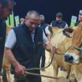 Sommet de l'élevage: 93 000 visiteurs pour la 30ème édition, pari tenu !